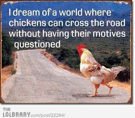 Chicken Motives